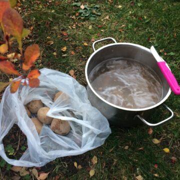 O tym, jak się zachwyciłam obieraniem ziemniaków (serio!)